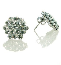 FH2 AZ0015 Cluster Crystal Earrings