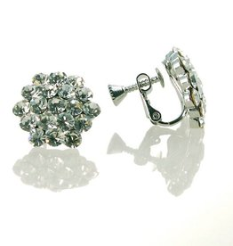 FH2 AZ0015-1 Cluster Crystal Earrings