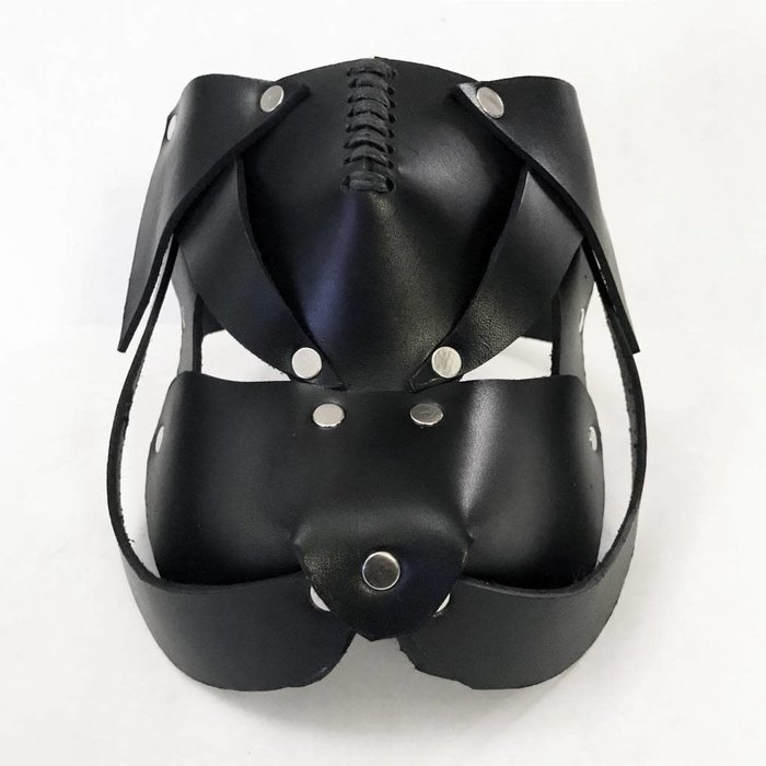 Pug Puppy Mask