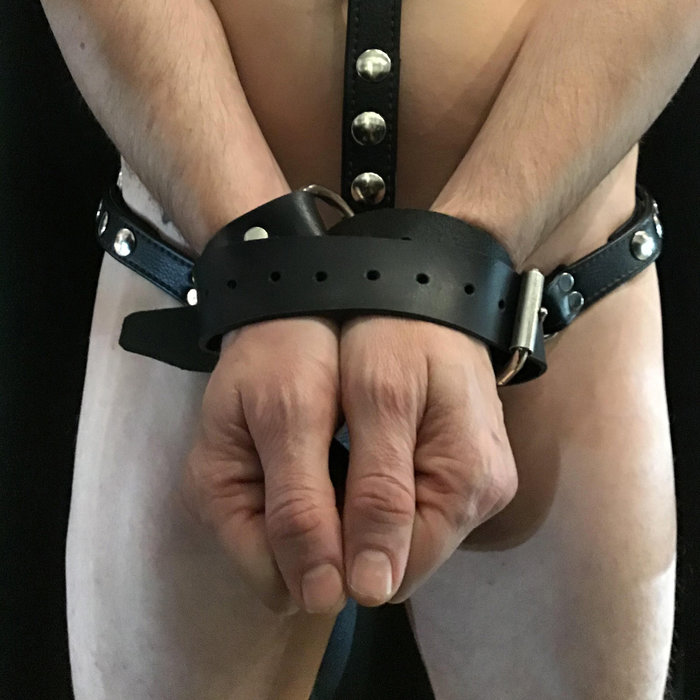 Belt/Collar/Restraints latigo