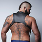 Cellblock 13, Cyclone, Harness