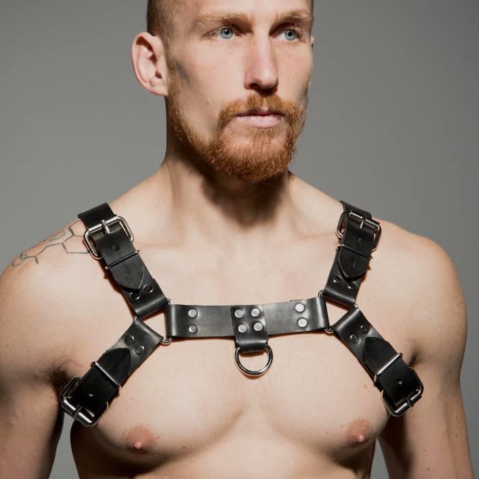 Harness, Half Bulldog Latigo