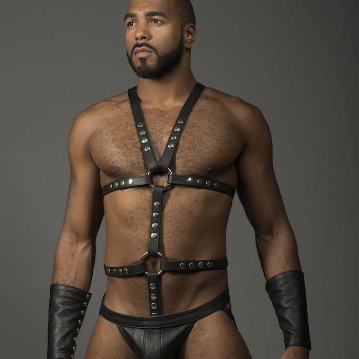 Harness, Full, O-Ring,