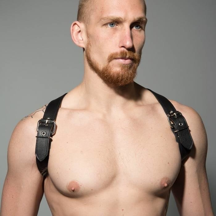 Harnesses & Suspenders