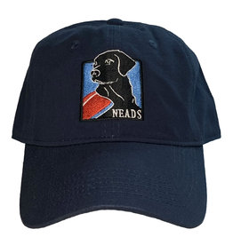 Cap America Baseball Hat- NEADS Logo