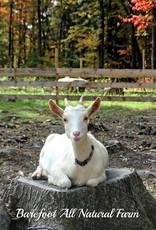Barefoot Natural Farms Soap