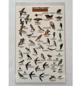 Mac's Field Guide- Southern California Park & Garden Birds