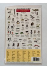 Mac's Field Guide- Garden Bugs of California