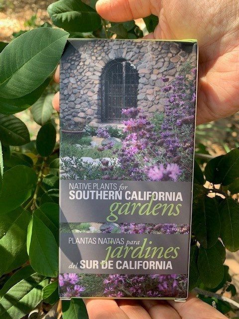 Native Plants for Southern California Gardens Flashcards