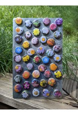 Native Wildflower Magnets