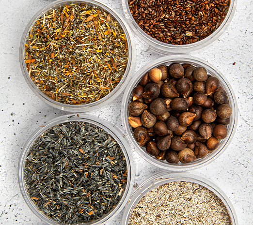 Specialty Seeds