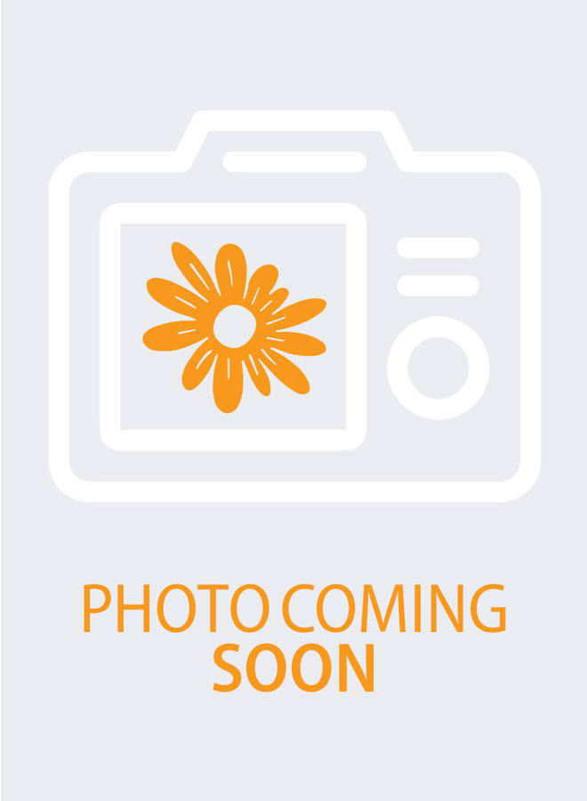 Gambelia speciosa - Showy Island Snapdragon (Plant)
