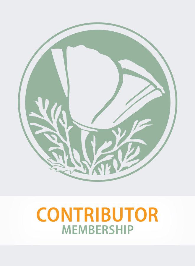 Annual Membership - Contributor