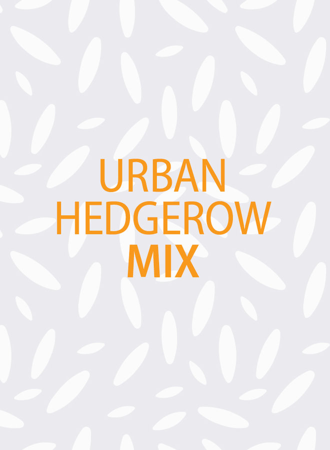 Urban Hedgerow Mix