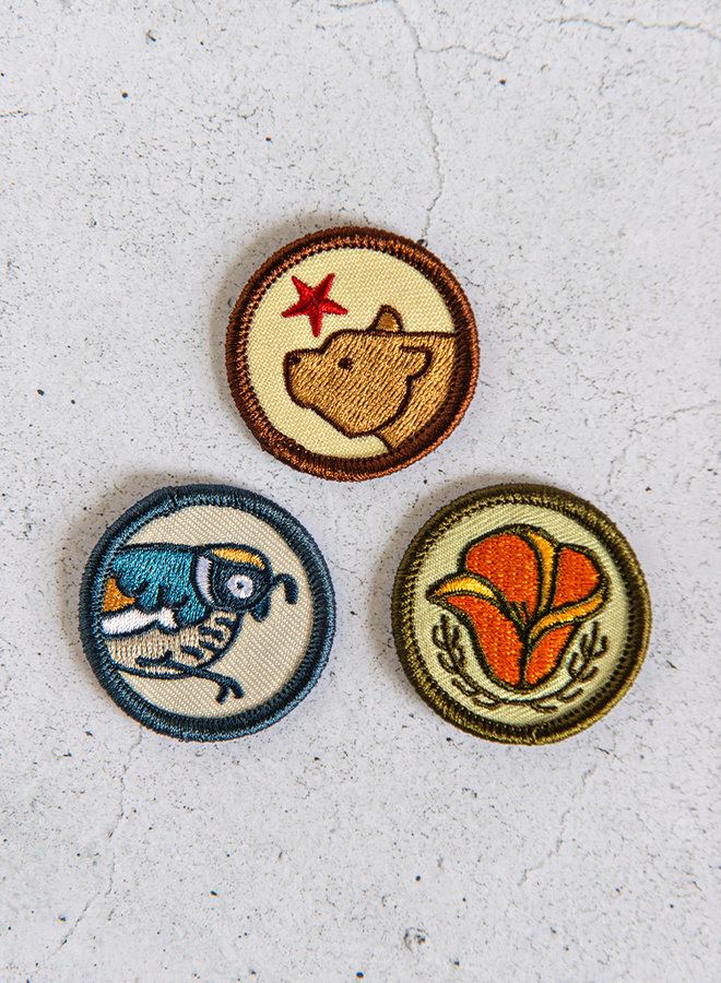 CA Merit Badge Set