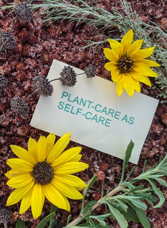 PLANT-CARE AS SELF-CARE Seed Packet