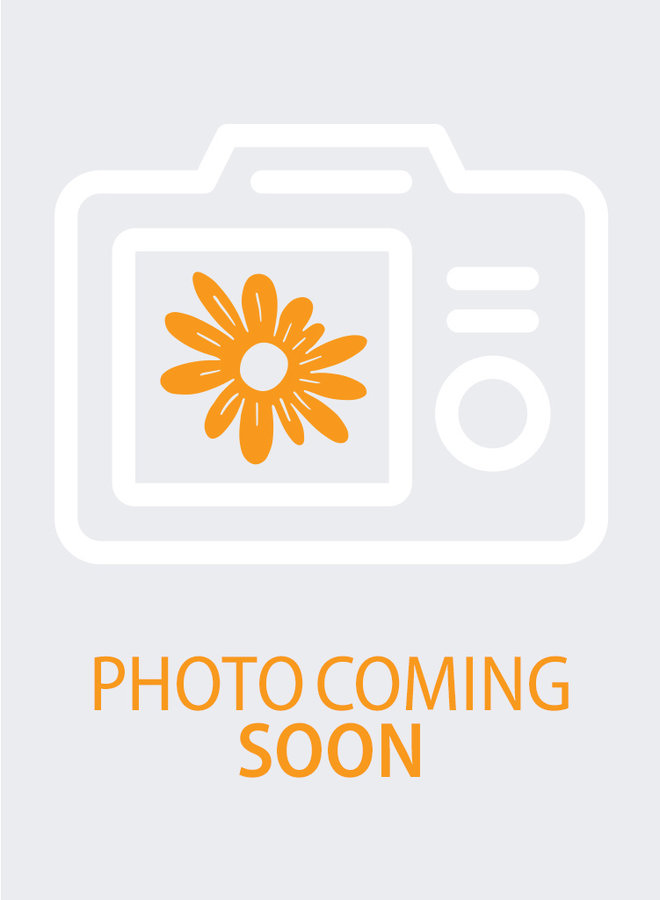 Epilobium 'Cloverdale' - Cloverdale California Fuchsia (Plant)