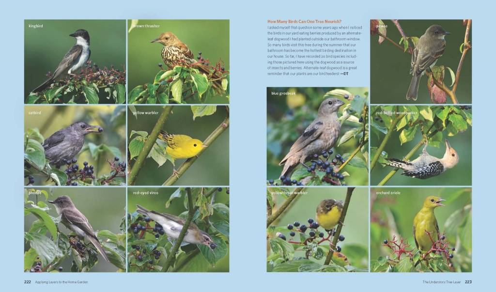 The Living Landscape: Designing for Beauty and Biodiversity in the Home Garden