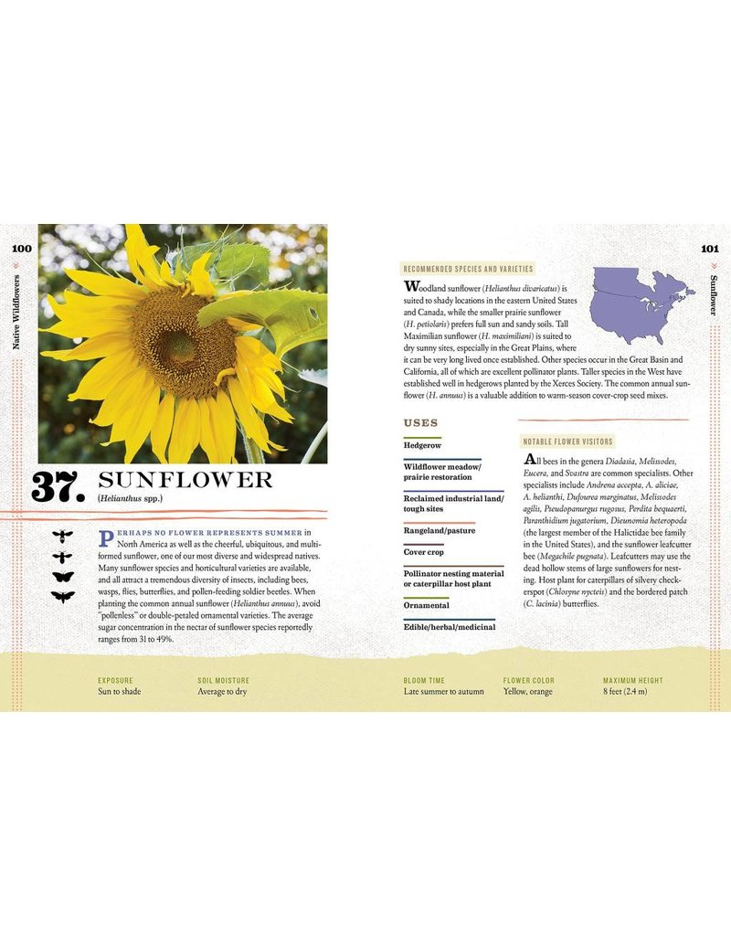 Storey Publishing 100 Plants to Feed The Bees