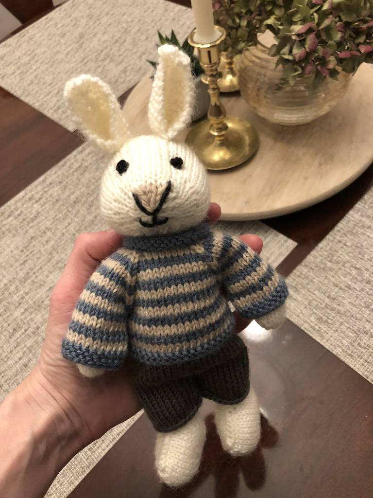Boy or Girl Bunny Class 2019
