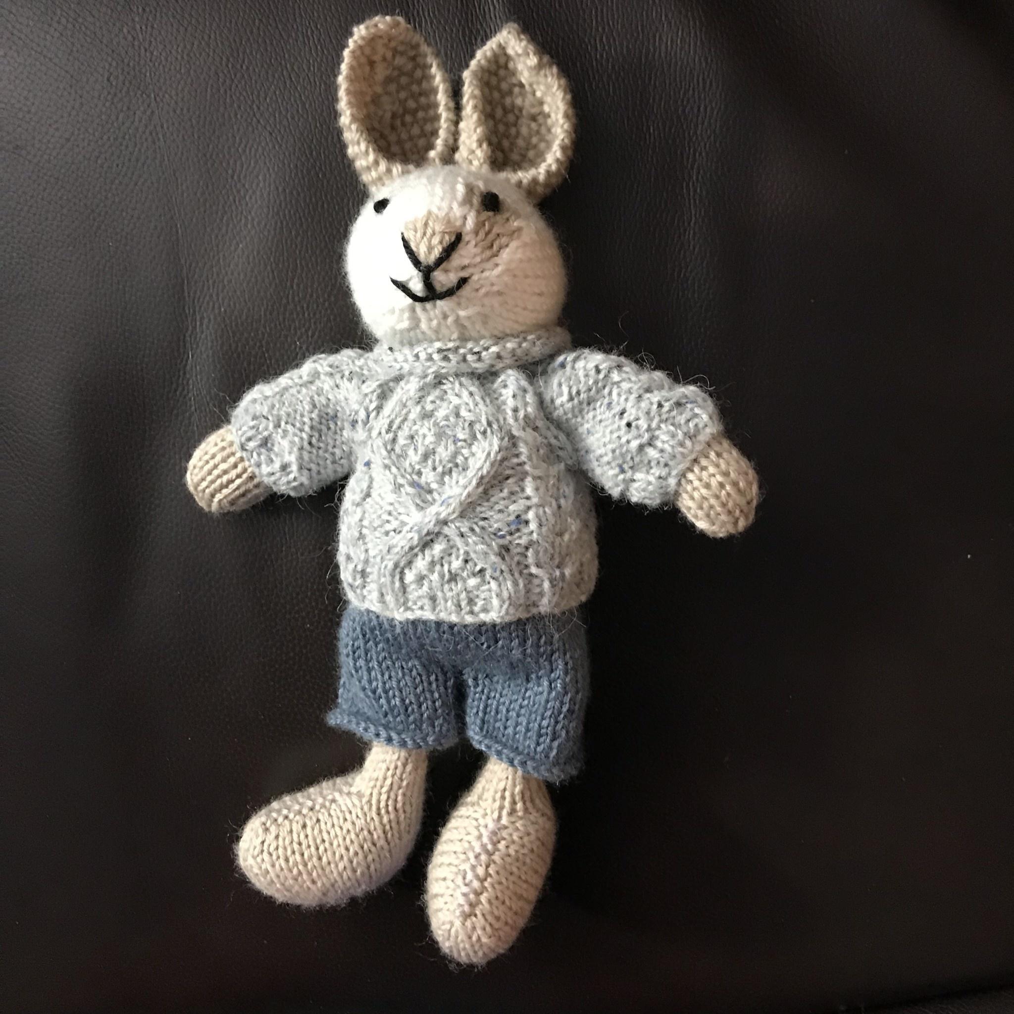Boy or Girl Bunny Class 2020