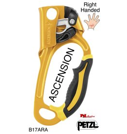 Petzl ASCENSION, Rope Grab, Right-handed, Gold