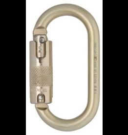 DMM Carabiner, 10mm Steel Oval Locksafe ANSI, 30Kn Light Gold Color