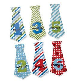 Mud Pie MP Boy Milestone Tie Stickers