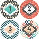 Lucy Darling Tribal Print Stickers