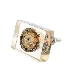 Indaba Clear Acrylic Slice Knob