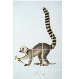 IXXI Ring tailed lemur - Large