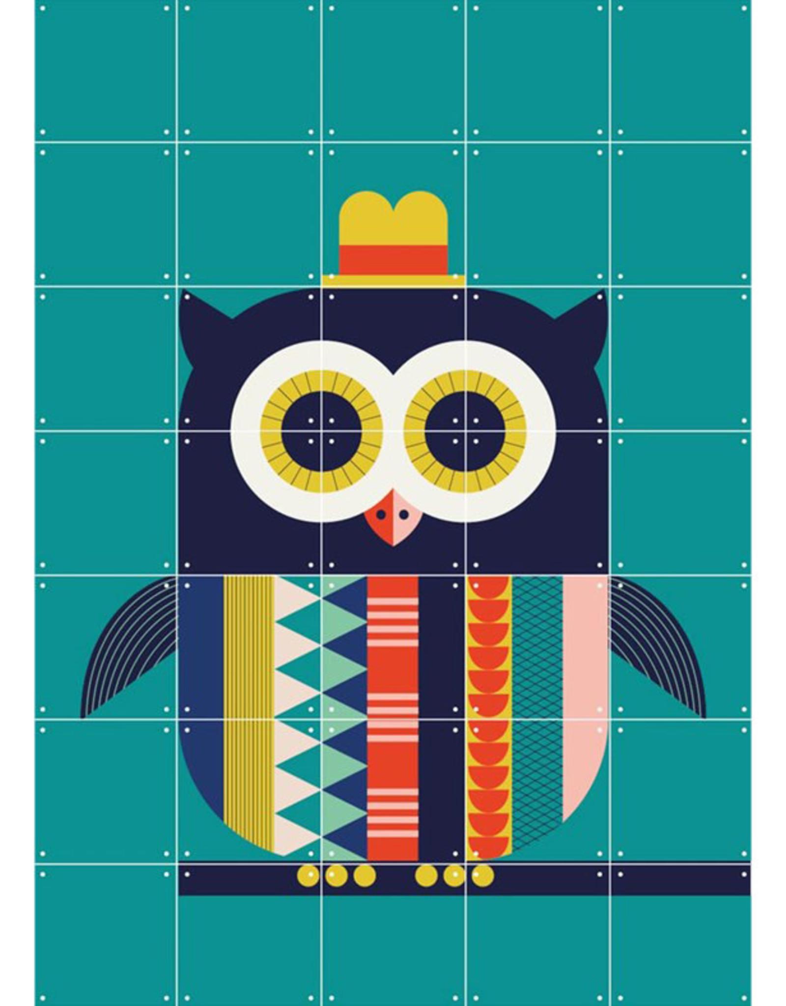 IXXI Colorful Owl - 70cm x 98cm