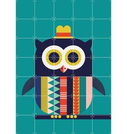 IXXI Colorful Owl