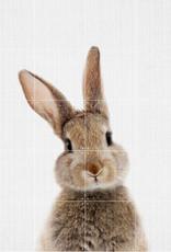 IXXI Rabbit (Double-Sided) - 80cm x 100cm