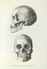 IXXI Skull - 120cm x 180cm