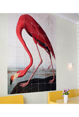 IXXI Audubon Flamingo - 100cm x 140cm