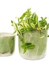Indaba Lime Palette Pot - Large