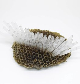 LBK Studio Paper Wasp Comb Sculpture - Small - 2