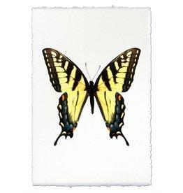 Barloga Studios Butterfly #3 Print