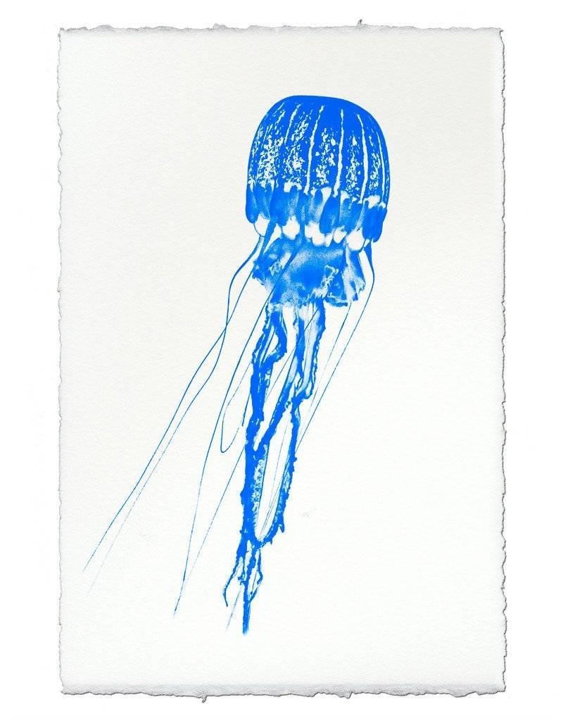 Barloga Studios Lampshade Jelly Print