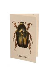 "Indaba ""Love Bug"" Card"