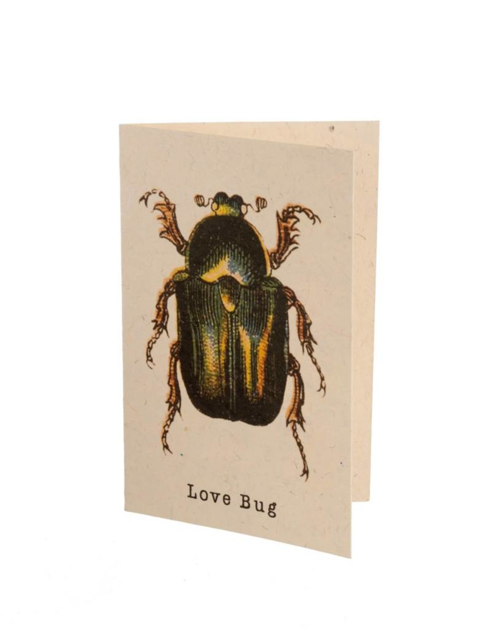 """""""Love Bug"""" Card"""