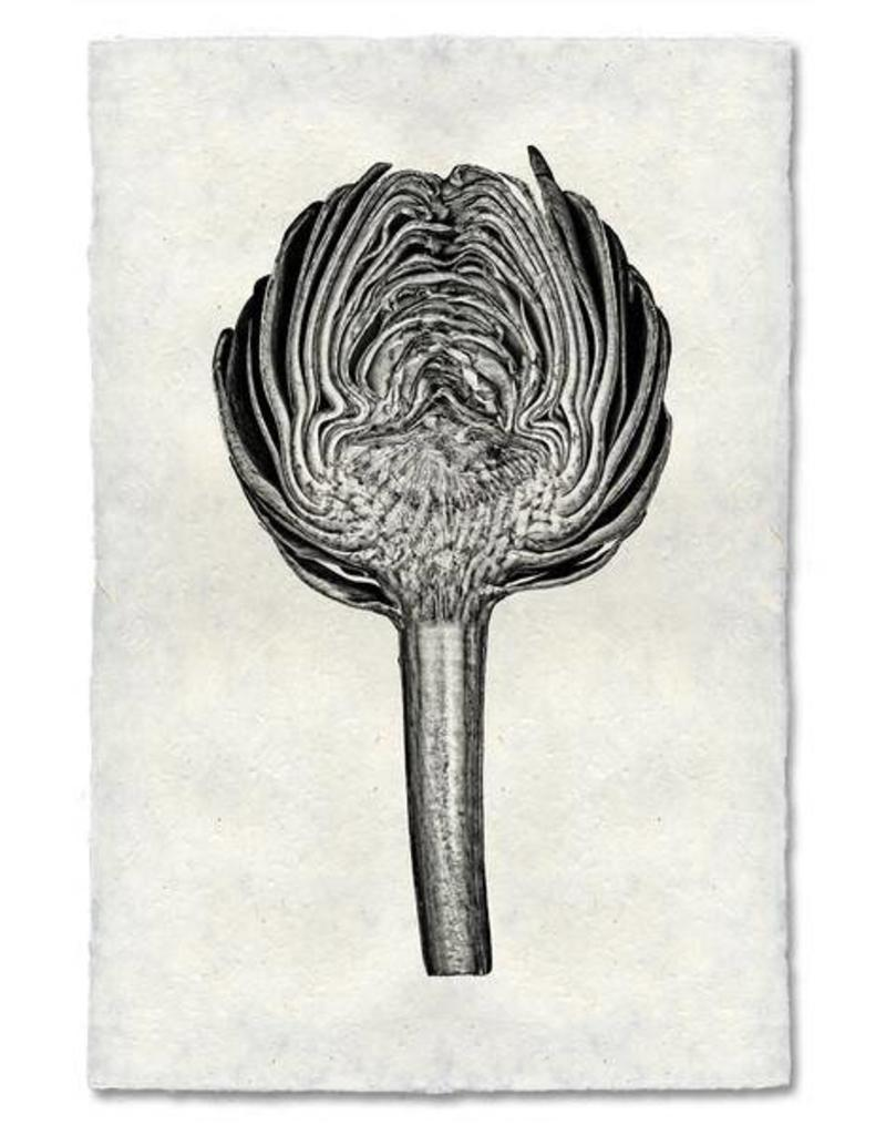 Barloga Studios Artichoke Print
