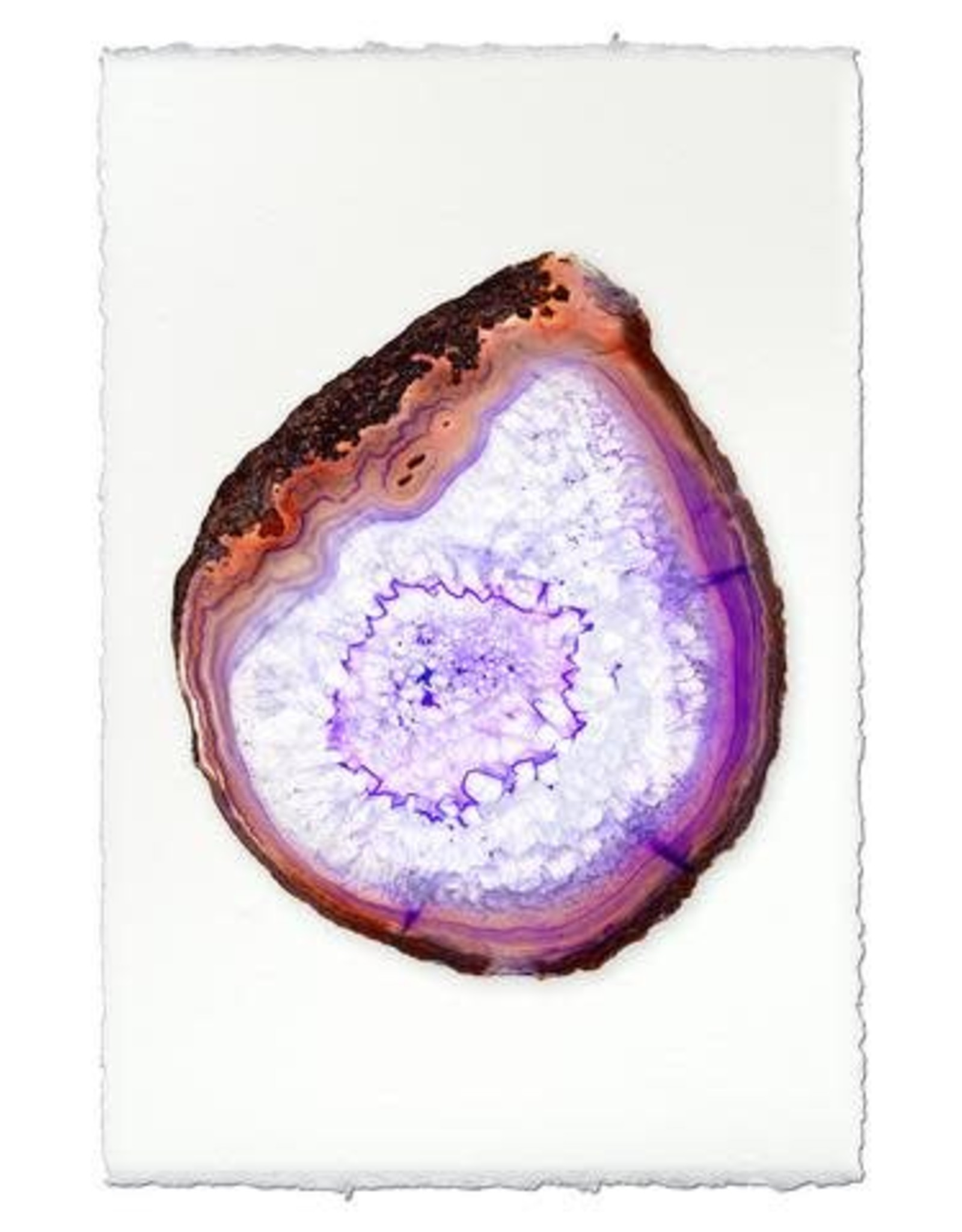 Barloga Studios Purple Agate Print