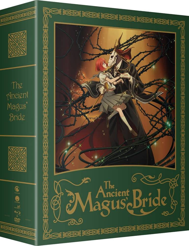 Funimation Entertainment Ancient Magus Bride,The Part 1 Blu-Ray/DVD LE