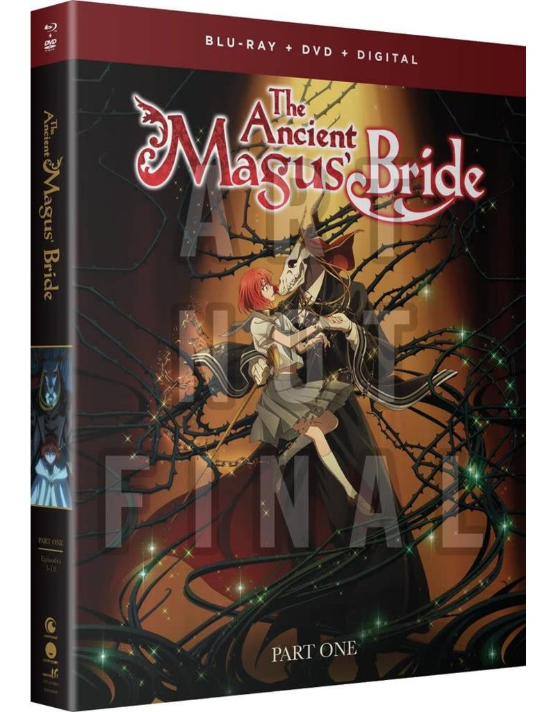 Funimation Entertainment Ancient Magus Bride,The Part 1 Blu-Ray/DVD
