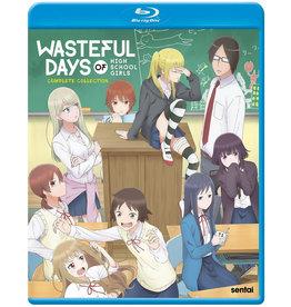 Sentai Filmworks Wasteful Days Of High School Girls Blu-Ray