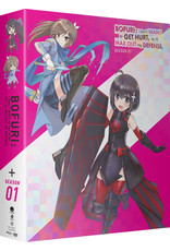 Funimation Entertainment BOFURI I Don't Want to Get Hurt So I'll Max Out My Defense Season 1 Limited Edition Blu-ray/DVD