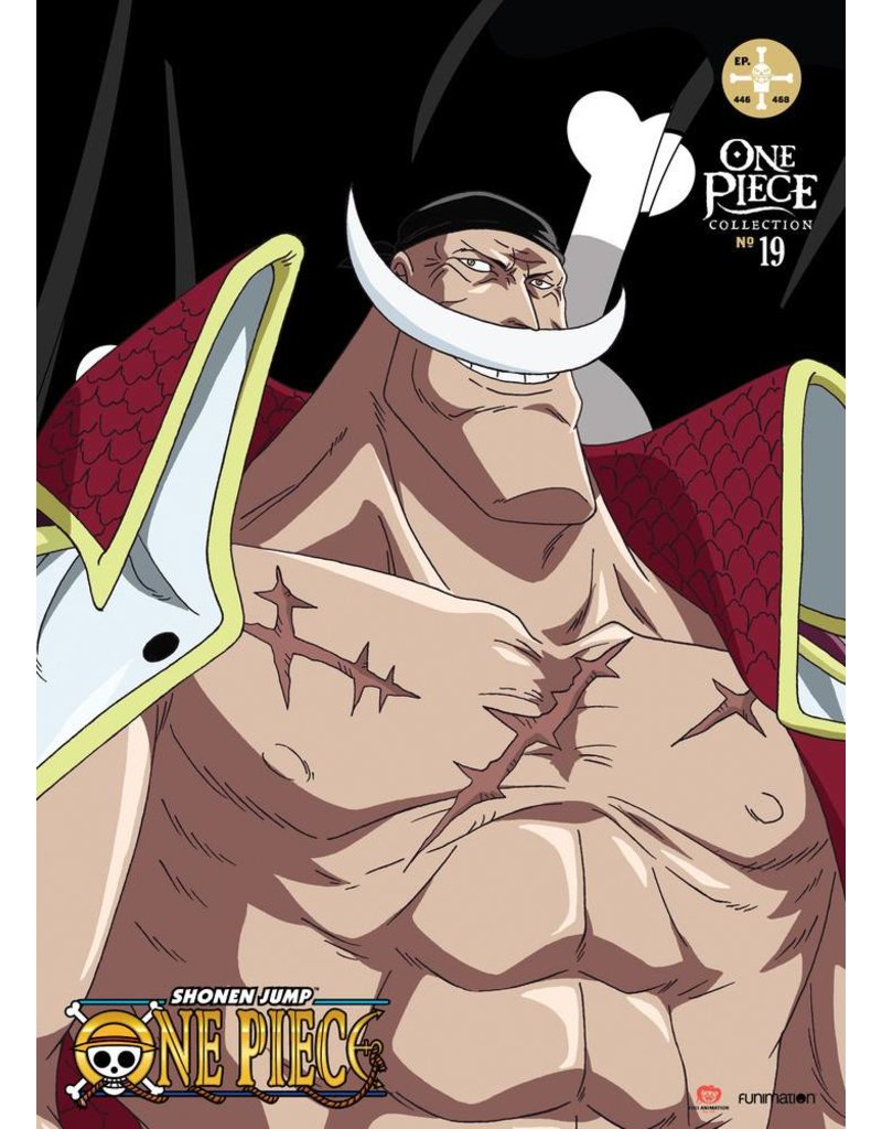 Funimation Entertainment One Piece Collection No.19 DVD