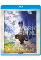 Sentai Filmworks Life of Budori Gusuko, The Blu-Ray